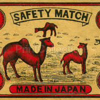 Camel Safety Match, Japan