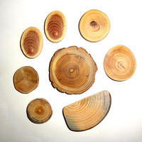 WOOD Jewelry supplies making, jewellery supply. Jewelry findings supplies. Wood jewelry findings supplier. Rustic wedding wood slices discs.