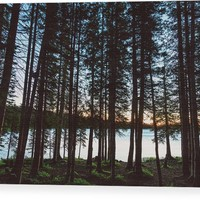 Mountain Forest Lake Wood Print