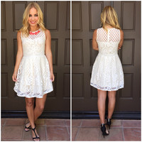 Alice Harlow Lace Flare Dress