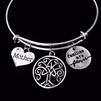 Families Are Forever Mother Mom Jewelry Adjustable Charm Bracelet Expandable Silver Bangle One Size Fits All Gift Inspirational Celtic Family Tree