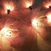 20 x Pink Bodhi flower string light with 3 m. wire and adapter for room and wedding decoration