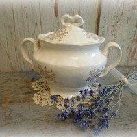 antique french sugar bowl / late 1800's / romantic & chic
