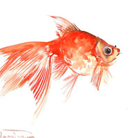 Goldfish, original watercolor painting, 10 X 8 in, aquarium fish, children art, kids wall art