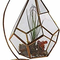 "Circleware 32504 Terraria Plant Glass Terrarium with Gold Metal, Stand Home Decor Flower Balcony Display Box and Garden Gifts 7.87"" x 10.24"", Triangle 7.8x10.2"