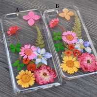 iPhone 6 case, natural daisy, Real pressed flowers Phone case, iPhone 6 Plus, iPhone 5S case, iPhone 5c case, samsung s5 case Note3 case-F21