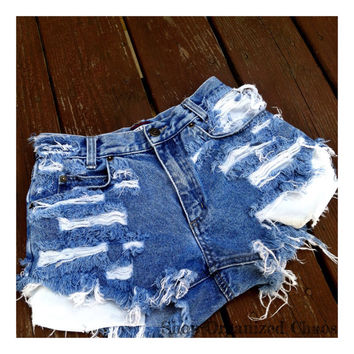 Plus Size High Waist Distressed Daisy Dukes