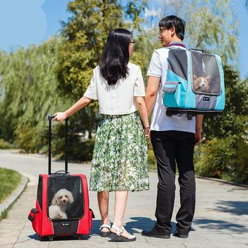The Ultimate Small Dog Carrier