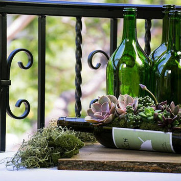 Wedding Decorations // Succulent Arrangement in UPcycled Wine Bottle Garden Planters