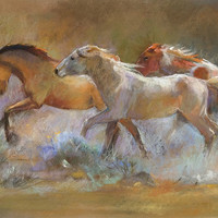Colors in the Dust by Dawn Emerson Fine Art Print