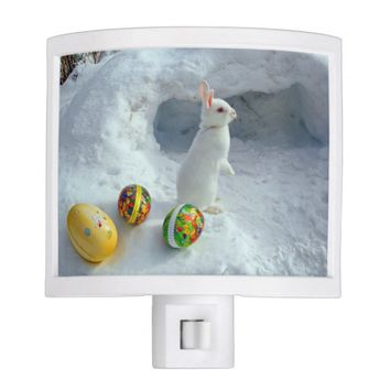 White easter rabbit in snow night light