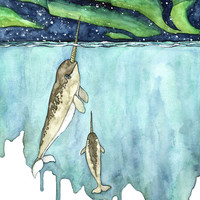 "Watercolor Narwhal Painting - Print titled, ""Northern Lights"", Narwhal, Narwhal Print, Whale Nursery, Whale Art, Whale Print, Narwhal Baby"