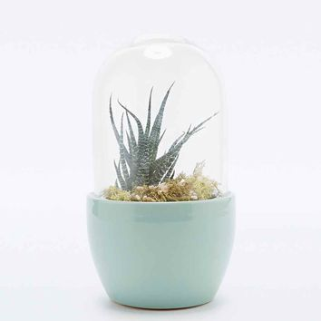 Urban Grow Mini Pill in Mint - Urban Outfitters
