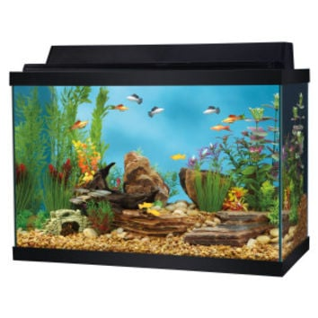 Top Fin 20 Gallon Aquarium Starter Kit