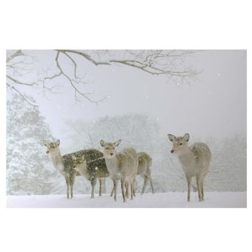 "Large Fiber Optic Lighted Winter Woods with Deer Canvas Wall Art 23.5"" x 15.5"""