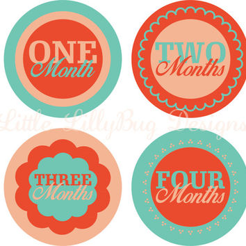 Teal and Coral Baby Month Stickers, Baby Monthly Stickers, Girl Monthly Shirt Stickers, Shower Gift, Photo Prop, Baby's First Milestone