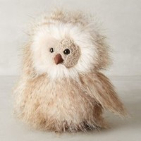 Orlando Owl Stuffed Animal by Jellycat White One Size House & Home