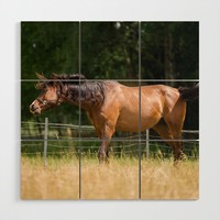 Royal class of horses, an Arabian thoroughbred Wood Wall Art by tanjariedel