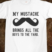 My mustache brings all the boys to the yard.