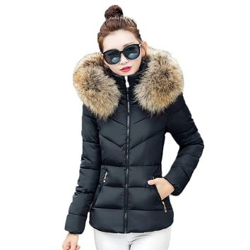 Park Fall 2016 fashion women winter jacket raccoon fur collar jacket thick hooded coat plus size women simulation casual jacket