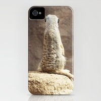 Meerkat iPhone Case by Kate Perry | Society6