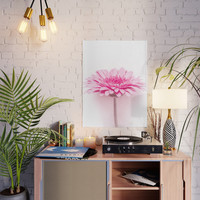 Pink gerbera Poster by vanessagf