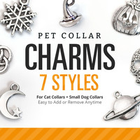 Pet Collar Charms (7 Styles) - Pick One - Moon / Snowflake / Skull / Pumpkin / Saturn / Celtic Knot / Witch Hat