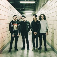 "028 Fall Out Boy - American Rock Band Music Stars 15""x14"" Poster"