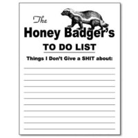 The Honey Badger Funny Notepad Office Memo Pad Gag Gift