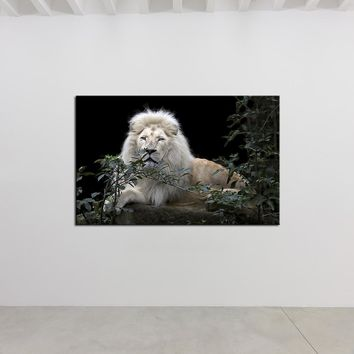 DPARTISAN big cats white lions Prints Wall Art Canvas Painting Wall Picture For Living Room Decoration No Frame painting