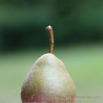 Nature Photography - Pear Still Life Photograph -  Earthy Home Decor