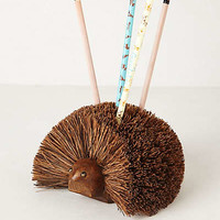 Anthropologie - Hedgehog Pencil Holder