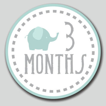 "Monthly One-piece Circles INSTANT DOWNLOAD. Baby Elephant. 4"" Round. DIY. Make Stickers, Iron-On or use for Scrapbooking. Liam Collection"