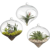 Terrarium Glass Vaso 11*9cm Top Hanging Vase Dinner Planter Terrarium Container Pots Home Wedding Decor Terrarium