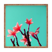 Deb Haugen North Shore Plumeria Square Tray