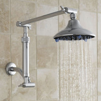 Rainfall Showerhead with Filter - Gaiam