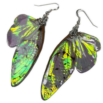 Fairy Wing Earrings - Iridescent Wings - Fantasy Jewelry - Gift for Her - Sterling Silver Earrings - Bridesmaid Earrings - Dragons Breath