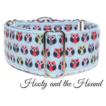 "Owl dog collar, martingale, buckle or tag house id collar, 2 inch, 1.5"" or 1"" custom wide light blue great dane, italian greyhound, bull dog"