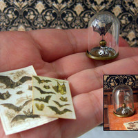 Miniature - Faux Paper taxidermy, Glass Dome - One Bat  - Optionally Pendant - Victorian Steampunk   - Scale 1:12