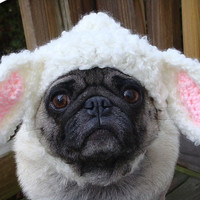 Little Lamb Dog Hat / Made to Order by Sweethoots on Etsy