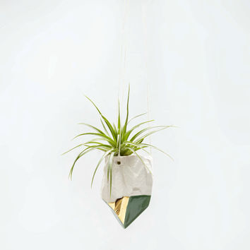 Porcelain Crystal Hanging Air Plant Planter with 14k Gold Luster