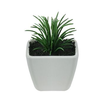 """3.5"""" Green and White Mini Green Succulent Planter Table Top Decoration"""