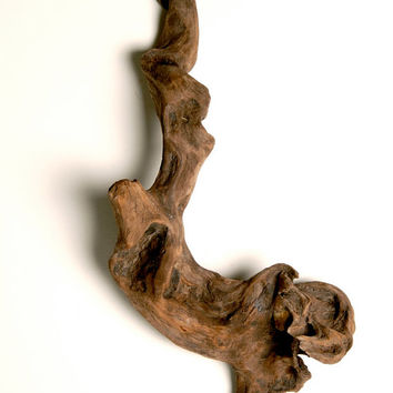 Unusual Twisted Divine Driftwood is Striking Wall or Shelf Art