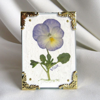 Miniature Pansy Picture, Real Pressed Starry Night Pansy In Victorian Miniature Gold Frame With Easel, Pressed Flower Art, Mixed Media