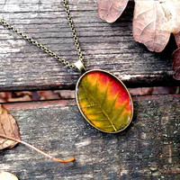 Colourful real leaf necklace - Pressed autumn leaf jewelry - Botanical jewellery - Nature inspired necklace - Autumn necklace - Oval silver