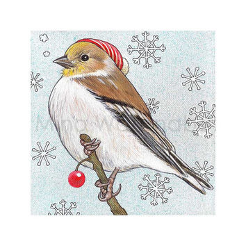 Goldfinch 2 - Winter Bird Series Illustration - Winter, Holiday, Christmas Theme - Birds Art - 8 x 8 Print - Fine Art Print - Wall Art