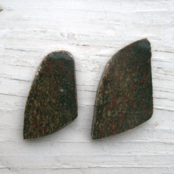 Dinosaur Bone Slices - 2 pieces, lapidary, jewelry supply, preform cabs , prehistoric, rough cut, wire wrapping stones, fossil, collector