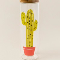 Cactus Glass Hydration Bottle