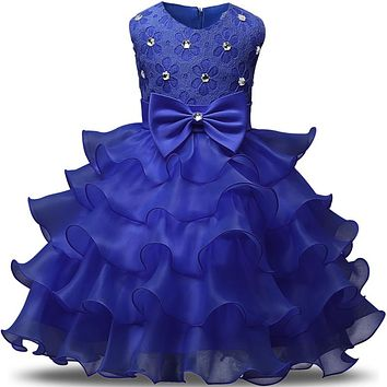 Girl Dress Princess Christmas Dresses