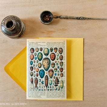 French Larousse birds Eggs Greeting Card-dictionary card-4x6 inch -Easter card-Eggs card-spring card-Design by NATURA PICTA